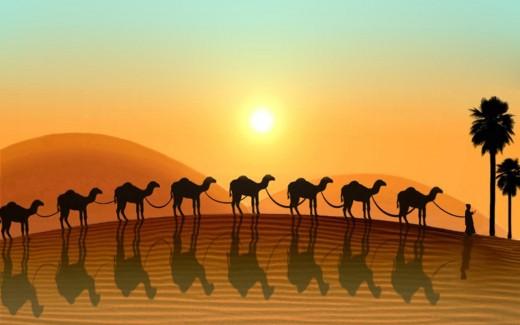 Abstract desert wallpaper