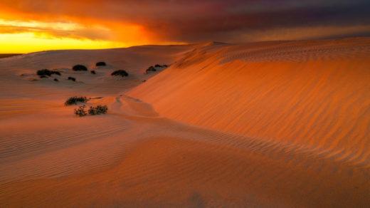 Dunes at Eucla, Australia