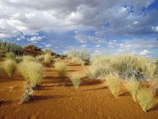 HD Desert Wallpaper For Desktop