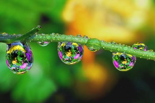 Raindrops by Marieceravoloo