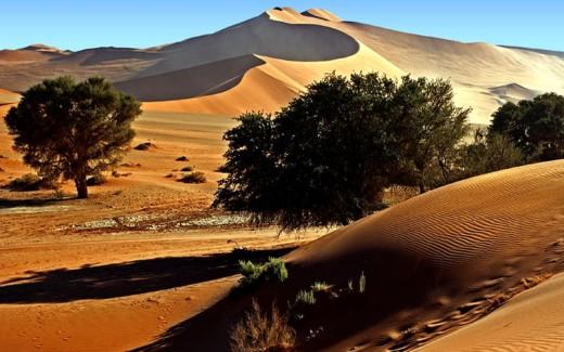 SUN SHADE OVER DESERT
