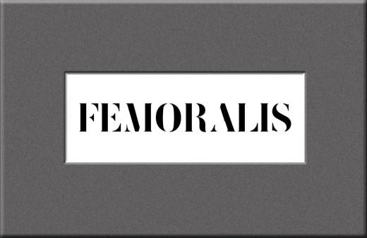 Femoralis Font