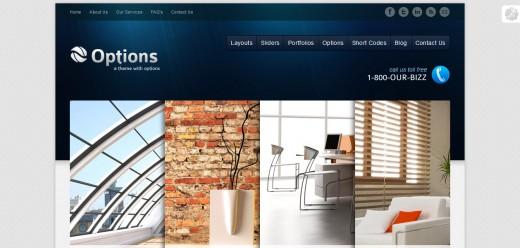Options Business Corporate Premium WordPress Theme