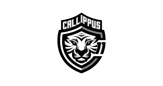 tiger logos designs