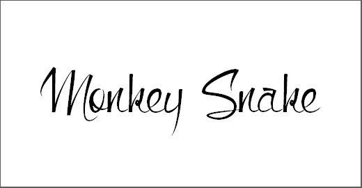 Monkey Snake Font